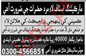 Marketing Staff Jobs Private Company