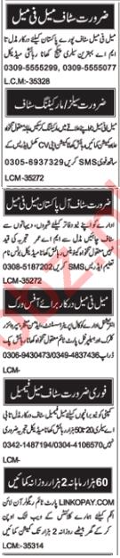 Supervisor Clerk Admin Manager Helper Jobs in Multan