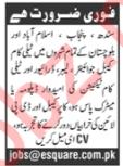 Labor Driver Telecom Technician Jobs in Lahore