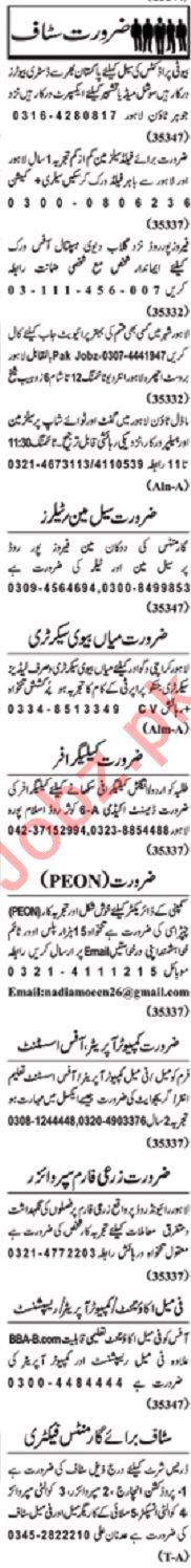 Nawaiwaqt Sunday Classified Ads 8th Dec 2019 Office Staff