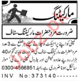 Sales & Marketing Staff Jobs 2019