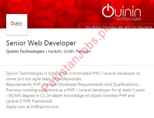Senior Web Developer Job 2019 in Karachi