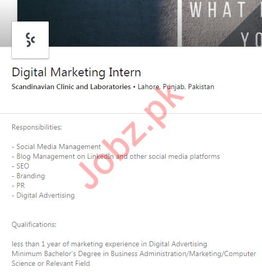 Scandinavian Clinic & Laboratories Digital Marketing Jobs