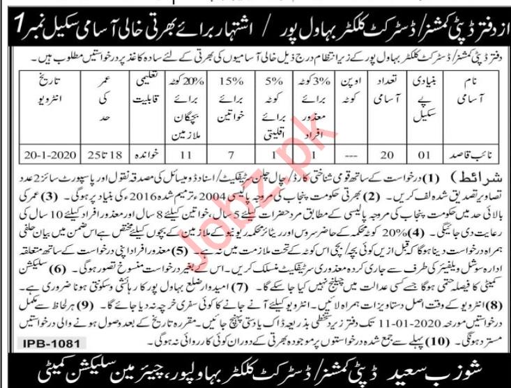 District Health Collector Bahawalpur Jobs 2020