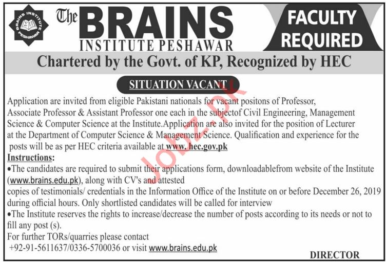 The Brains Institute Professor Jobs 2020