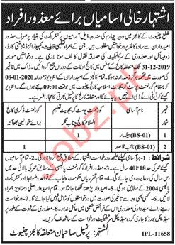 Higher Education Department Chiniot Jobs 2020