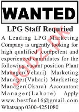 LPG Marketing Company Jobs in Vehari, Lahore & Okara