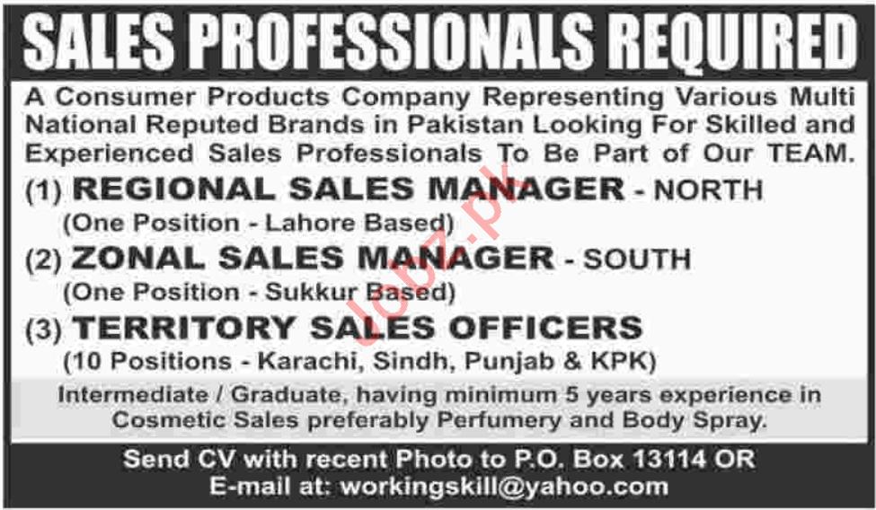 Sales Professional Jobs 2020 in Sindh & Punjab