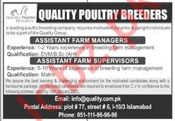 Quality Poultry Breeders Islamabad Jobs 2020 for Manager