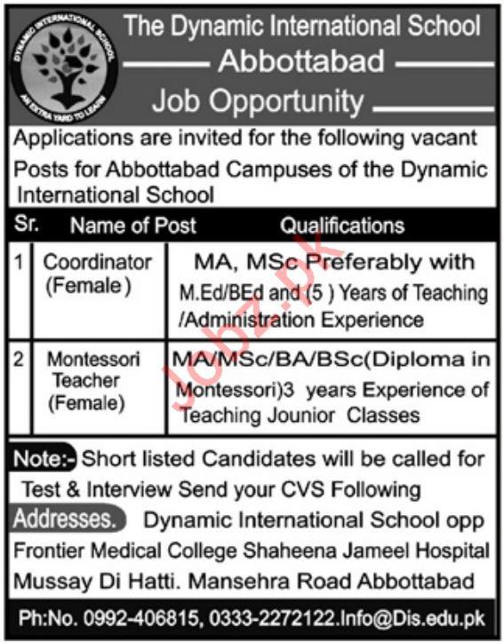 The Dynamic International School Teaching & Cordinator Jobs