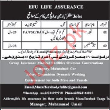 EFU Life Assurance Main Branch Muzaffarabad Jobs 2020