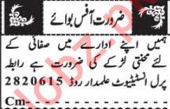 Office Boy Jobs in Pearl Institute Quetta