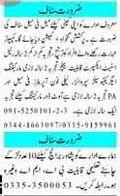 Daily Mashriq Newspaper Classified Jobs 2020 in Peshawar KPK