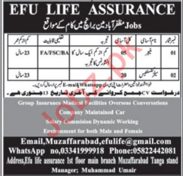 Manager & Sales Consultants Jobs in Efu Life Assurance