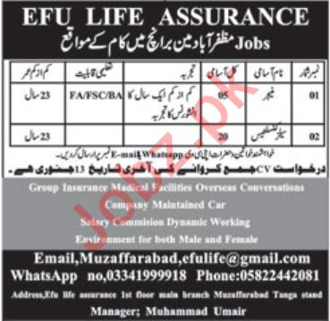 Manager & Sales Consultants Jobs 2020 in Muzaffarabad