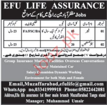 Efu Life Assurance Ltd Jobs in Muzaffarabad