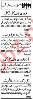 Daily Nawaiwaqt Newspaper Classified Ads 2020 In Lahore