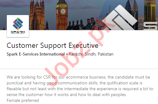 Customer Support Executive Job in Karachi