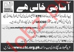 Chip Training & Consulting Private Limited UCCSO Jobs