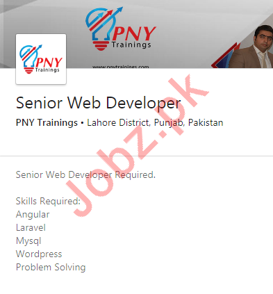 Senior Web Developer Job 2020 in Lahore