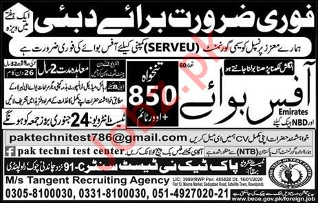 Office Boy Jobs in Duabi