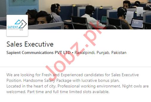 Sales Executive Job 2020 in Rawalpindi