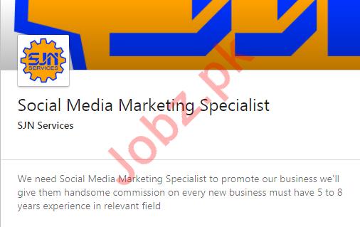 Social Media Marketing Specialist Job 2020 in Karachi
