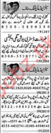 Dunya Sunday Classified Ads 19 Jan 2020 for Sales Staff