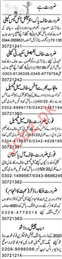 Express Sunday Multan Classified Ads 19 Jan 2020