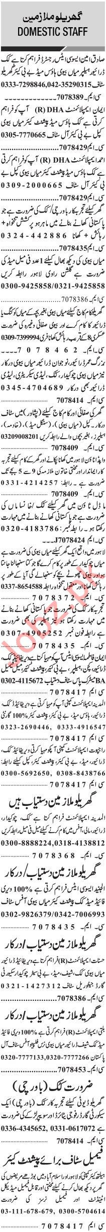 Jang Sunday Classified Ads 19 Jan 2020 for Domestic Staff