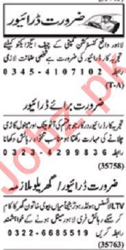 Nawaiwaqt Sunday Classified Ads 19 Jan 2020 for Drivers