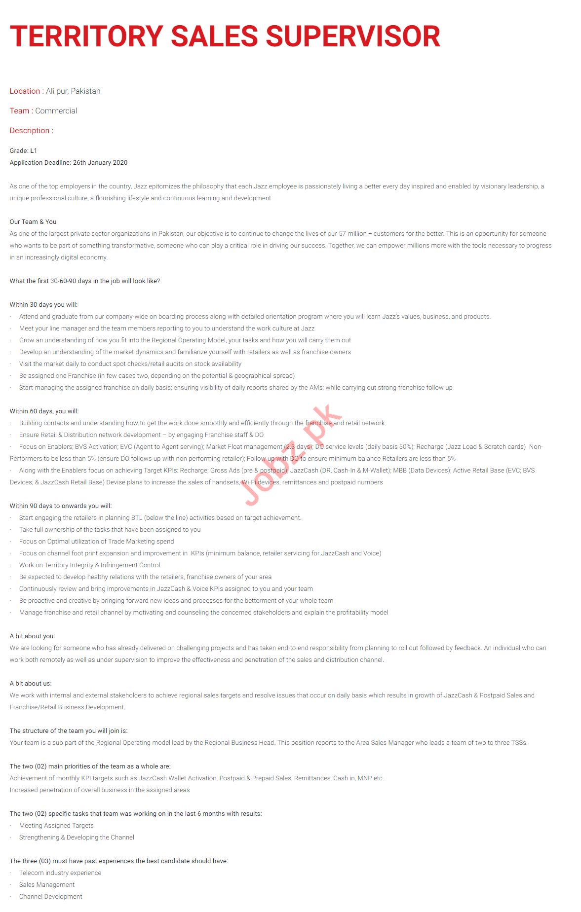 Territory Sales Supervisor Job 2020 in Ali Pur Islamabad