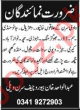 News Reporter jobs in Daily Shamal Newspaper
