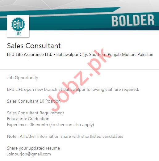 Efu Life Assurance Ltd Job 2020 For Sales Consultant