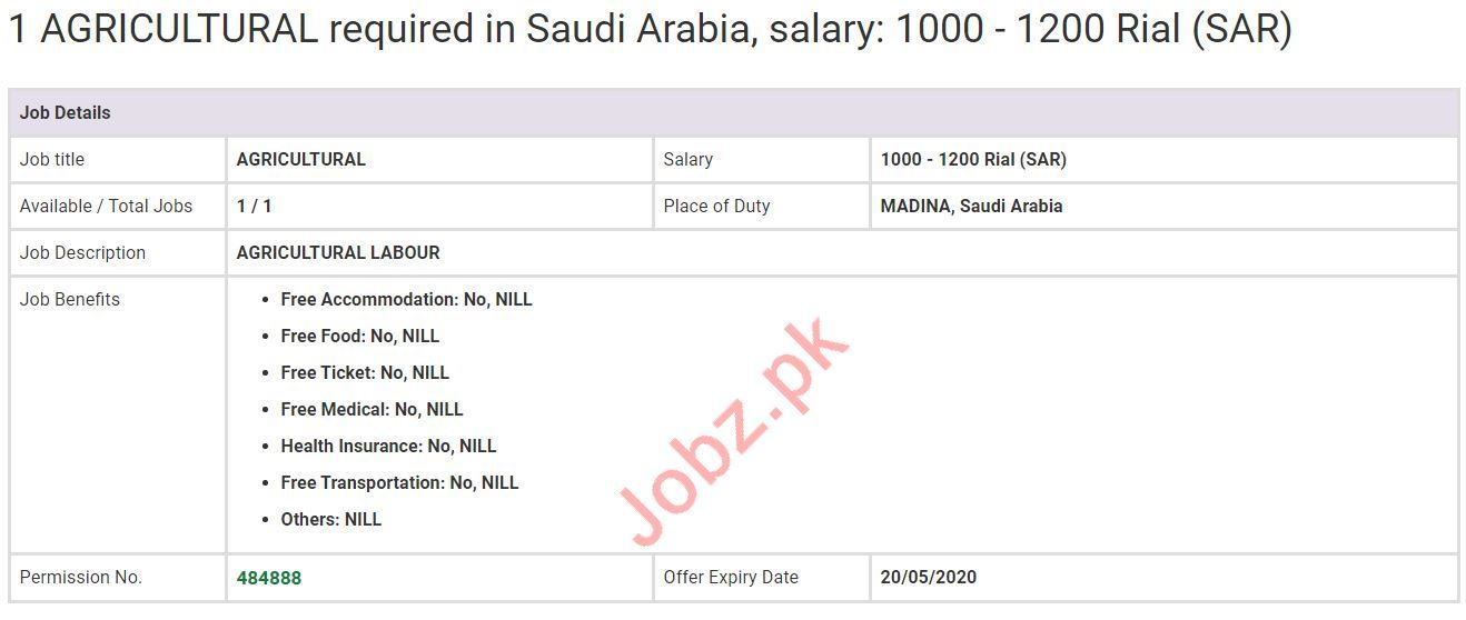 Agricultural Labour Jobs in Madina Saudi Arabia
