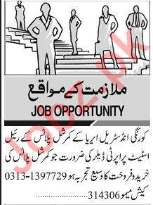 Property Dealer Jobs in Real Estate Company
