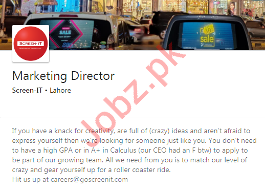 Marketing Director Job 2020 in Lahore