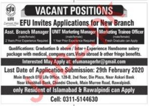 EFU Life Assurance Management Jobs 2020