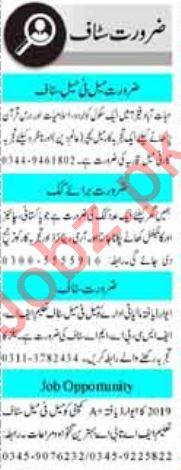 Male & Female Staff Jobs 2020 in Peshawar
