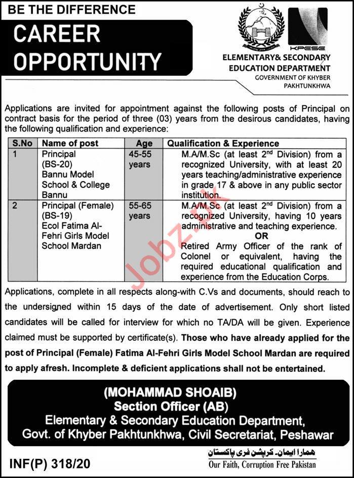 Elementary & Secondary Education Department Principal Jobs