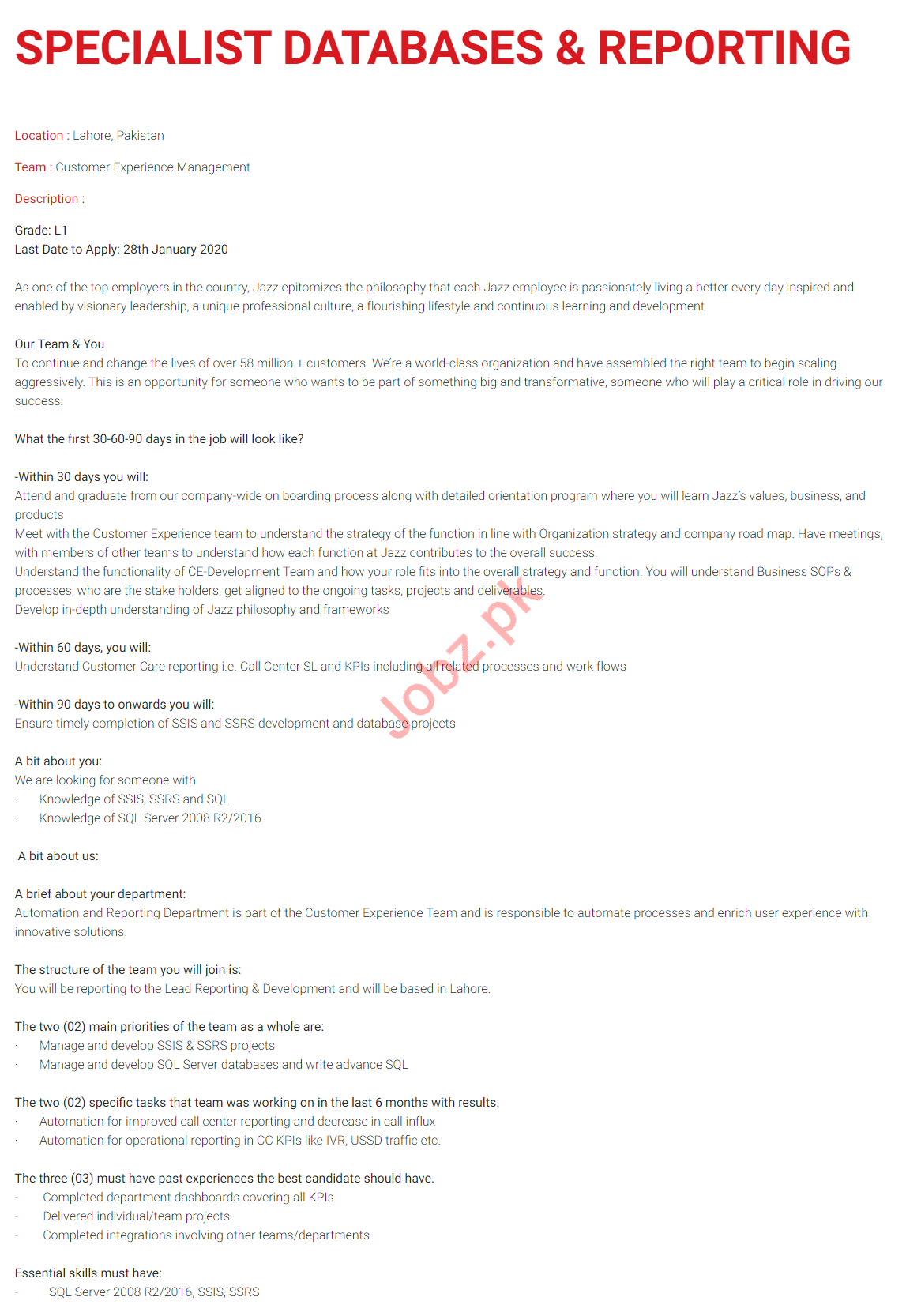 Sopecialist Database & Reporting Jobs in Jazz Telecom