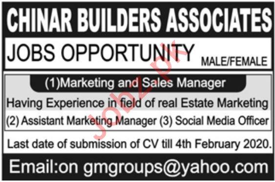 Chinar Builders Associates Pvt Ltd Jobs 2020 in Rawalpindi