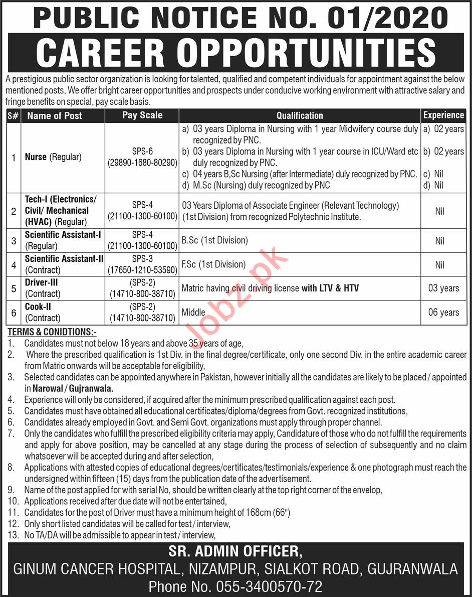 Ginum Cancer Hospital Medical Staff Jobs 2020
