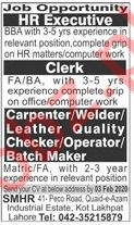 Technical Staff & HR Executive Jobs in Private Company