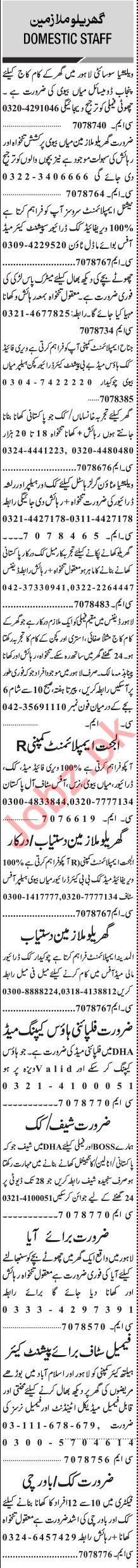 Jang Sunday Classified Ads 26 Jan 2020 for House Staff