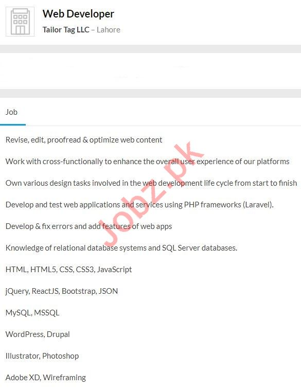 Web Developer Job 2020 in Lahore