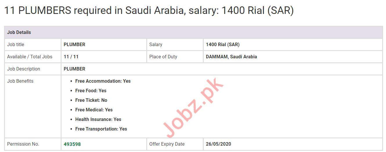 Plumbers & General Carpenter Jobs 2020 in KSA
