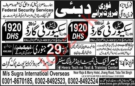 Federal Security Services LLC Jobs 2020 in Dubai UAE