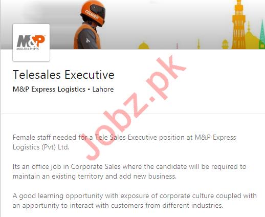 M&P Express Logistics Lahore Jobs 2020 for Executives