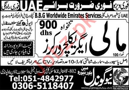 Mali & Agriculture Jobs in UAE